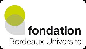 fondation bordeaux universite
